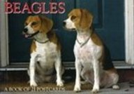 Beagles Postcard Book