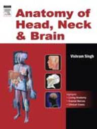 Anatomy Of Head, Neck And Brain