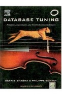 Database Tuning: Principles Experiments and Troubleshooting Techniques